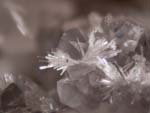 WillemiteMicrominerals, Rare and Unusual Minerals